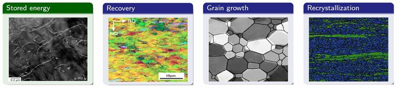 DIGIMU_grain-size-prediction